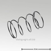 0006-4081-300 Цилиндр. пружина сжатия 18x1x31 – 4,5 WDG D40 фото