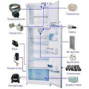 Запастные части для холодильника фото