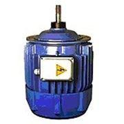 Электродвигатель асинхронный серии KG 1605-6 (для тельфера) фото