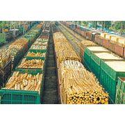 Закупка древесных заготовок фото