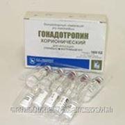 Гонадотропин хорионический лиофилизат для раствора 1000ЕД 5мл №5 флаконы фото