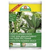Грунт для декоративно-лиственных растений (Greenworld), 10л фото