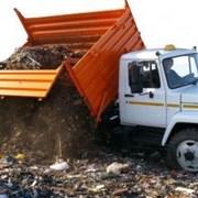 Вывоз веток из садового участка в Нижнем Новгороде фото