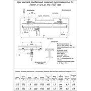 Кран мостовой однобалочный подвесной г/п 1т L12-15 фото