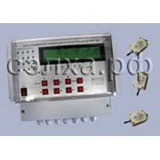 Система контроля вибрации СКВ-301-16Ц фото