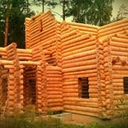 Производство деревянных домов срубов фото