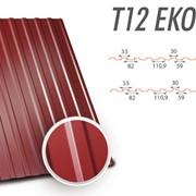 Металопрофіль Т-12 ЕКО фото