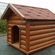 Будка для собаки деревянная, Киев фото
