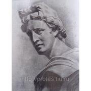 Гипсовая голова карандашом, словесный портрет, примеры портрета фото