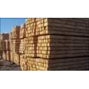 Профессиональная сушка древесины фото