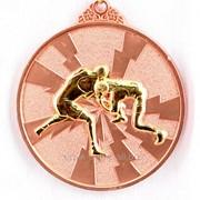 Медаль рельефная борьба - бронза фото