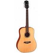 S21-GT Акустическая гитара, с чехлом, глянец, Parkwood фото