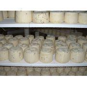 Полку для сыра купить в Краснодаре фото