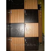 Арендные шкафы для фитнес клубов фото