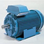 Асинхронные электродвигатели, Синхронные двигатели WEM Electric СДЭ-630-6 фото