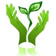 Нормы предельно допустимых выбросов вредных веществ в атмосферу фото