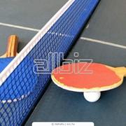 Столы теннисные фото
