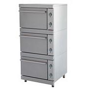 Шкаф жарочный электрический ЭШВ - 3 фото