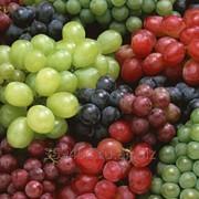 Виноград более 15 сортов Крымский. фото