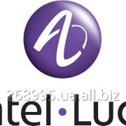 Сервисное обслуживание офисних АТС Alcatel-Lucent. фото