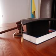 Адвокат фото