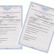 Получение выдержки, выписки, справки из единого государственного реестра фото