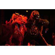 Светодиодное шоу электрические костюмы лайт-шоу огненное шоу огненный театр ростовые куклы танец дракона танец тигра костюм дракона костюм быка red-bull символ года оригинальный жанр шоу-программа шоу-группа восточное шоу восточный театр фото