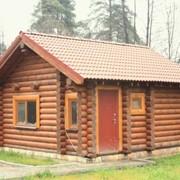 Бани и деревянные дома фото