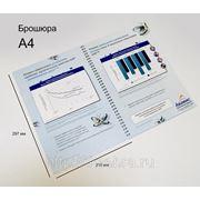 Брошюра А4, пружина, плотная обложка, 10 страниц, фото