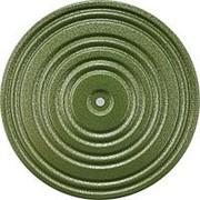 Диск здоровья арт.MR-D-03 диаметр 28 см зеленый/черный фото