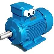 Электродвигатель АИР 200 L6 (30 кВт) фото