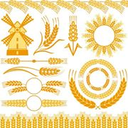 Мука пшеничная в/с с дисконтом фото