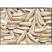 """Белые соленые семечки """"Ciko"""" (фасованые 40г) фото"""