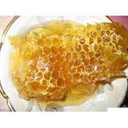 Мёд пчелиный натуральный фото