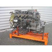 Двигатель Daf MX265 фото