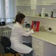 ДНК-исследования фото
