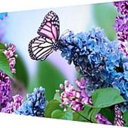 Картина на холсте 25х35 Н809 фото