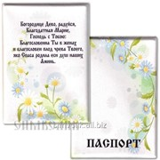 Обложка для паспорта Артикул:003011обл001 фото