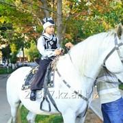 Конь, трон с сопровождением фото