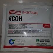 Ясон , СП (ацетамиприд 200г/кг) фото