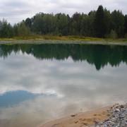 Проектирование и строительство водоемов для купания и рыбалки. фото