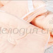 """Комплект """"Nega-lux"""" фото"""