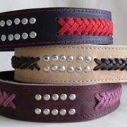 Ошейники для собак из кожи с украшением и плетением. фото
