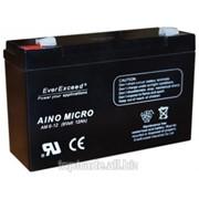 Аккумуляторная батарея EverExceed AM 6-12 фото