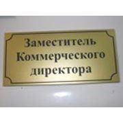Именная офисная табличка на дверь 200 х 100 фото