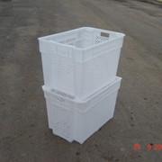 Ящик пластиковый перфорированный фото