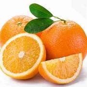 Сладкие и Полезные Апельсины фото
