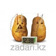 Эко-часы Картошка - potato clock фото