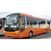 Автобус MAN Lion's Regio R12 межгород фото
