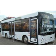 Автобуса МАЗ-206060 городской фото